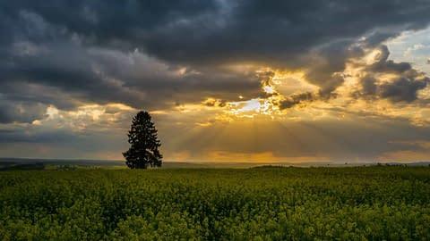 Hope in Despair, Light through the Darkness