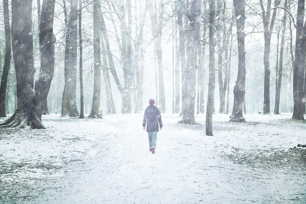 Transgender thoughts on a winters day