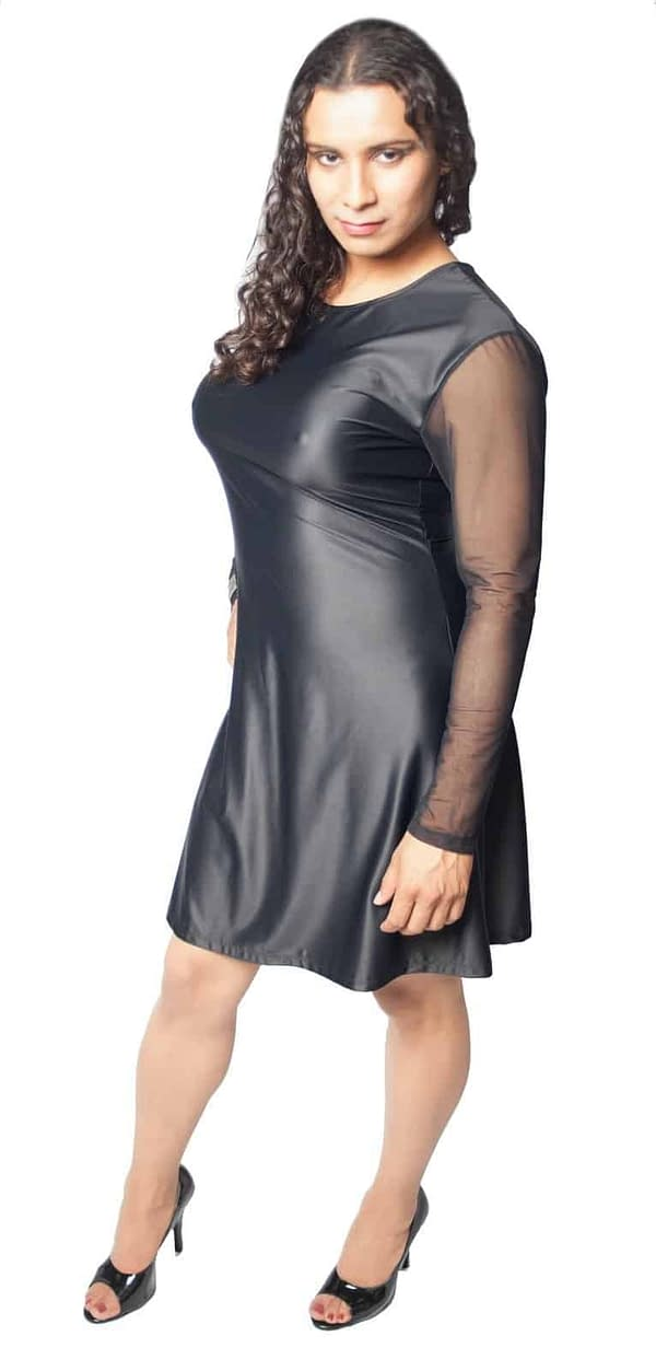 A-Line Dress With Mesh Long Sleeves