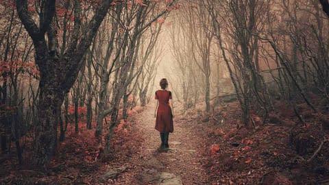 The narrow and untrodden transgender path